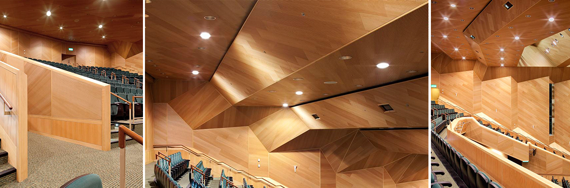 Eomac / TOPLINE Wood Veneered Acoustic Wall and Ceiling Panels